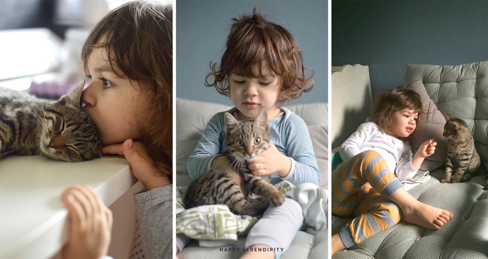 Die Zwillinge lieben Kater Carlo sehr. Im Blogpost erzähle ich euch, wie es ist mit 3 kleinen Jungs den Alltag zu verbringen. www.happyserendipity.com