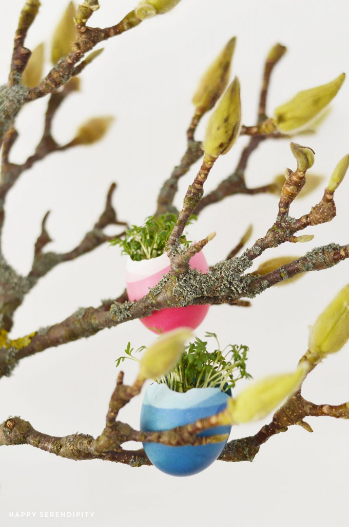 flowers in eggs_urban jungle bloggers_spring decoration_hanging gardens_hanging egg pots_hanging eggs_egg planters_happy serendipity_blumen in eiern_eier dekoration_easter_ostern_oster dekoration_magnolia_magnolie