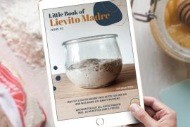 Little Book of Lievito Madre Header